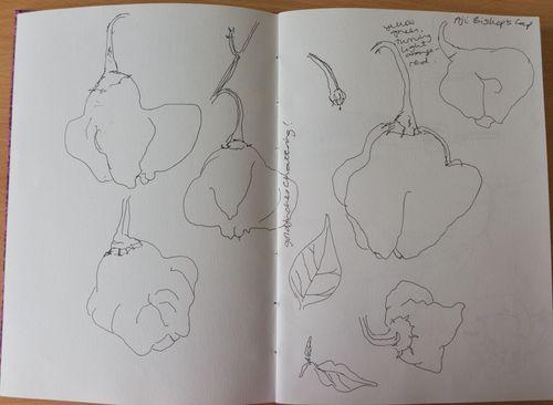 20130721-drawingDay-1