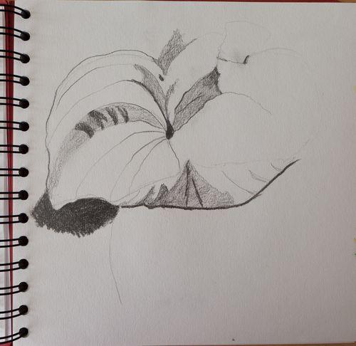 20130721-drawingDay-7